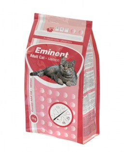 Eminent adult cat salmon